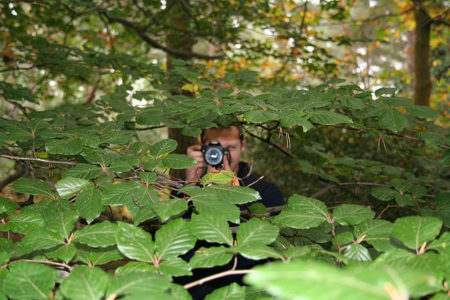 paparazzi-in-bushes
